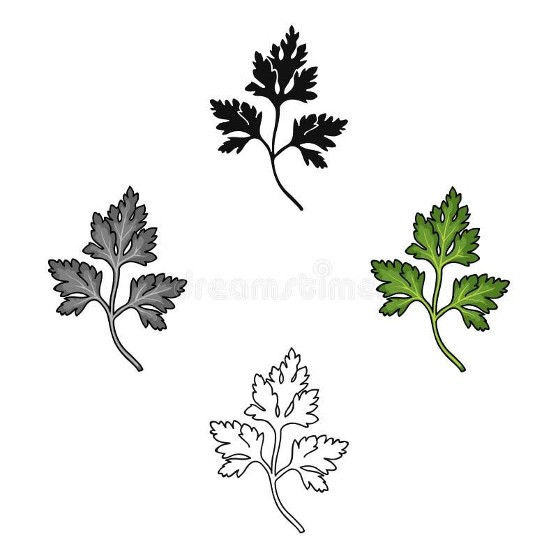 Petersilienikone in der Karikatur, schwarze Art lokalisiert auf weißem Hintergrund Kraut eine Gew?rzsymbolvorrat-Vektorillustrati lizenzfreie abbildung