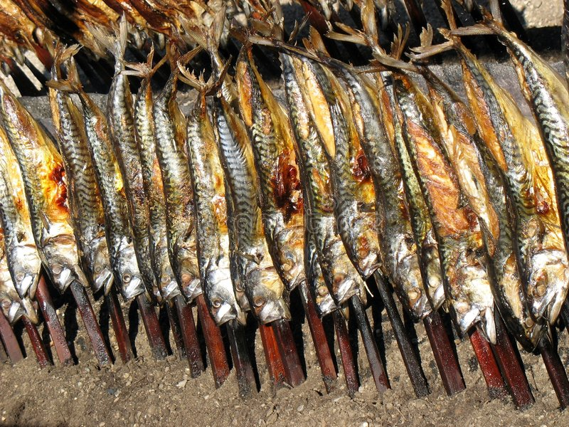 Petisco de Oktoberfest - peixe fumado. imagem de stock