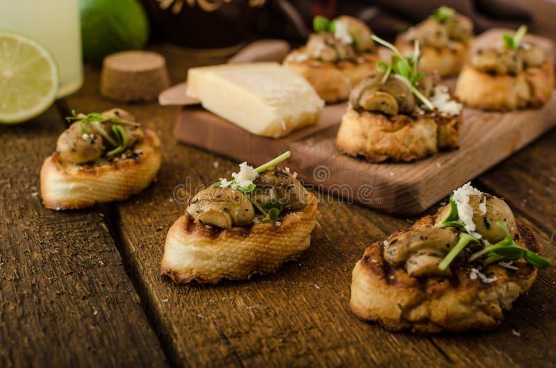 Petiscos do cogumelo no baguette grelhado imagens de stock royalty free