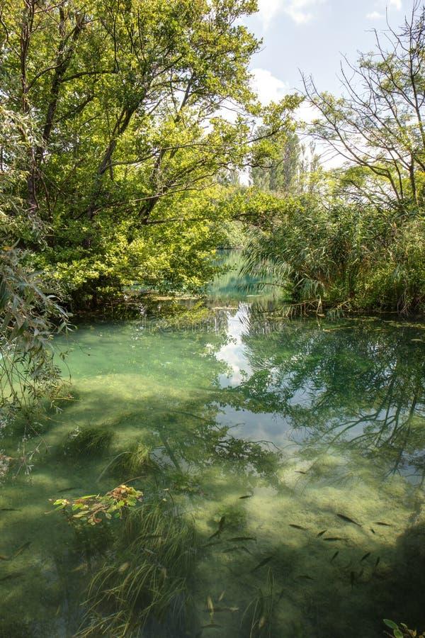 Petit étang au parc national de Krka photo libre de droits