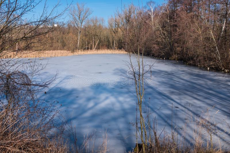 Petit étang dans une forêt congelée plus de photos libres de droits