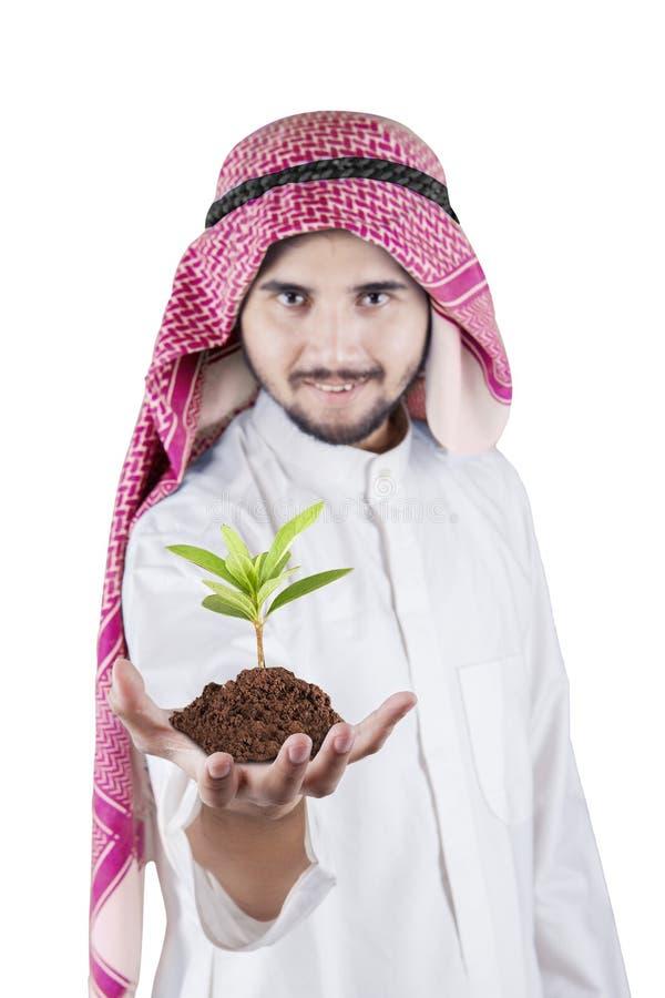 Petit arbre d'homme d'affaires Arabe photographie stock libre de droits