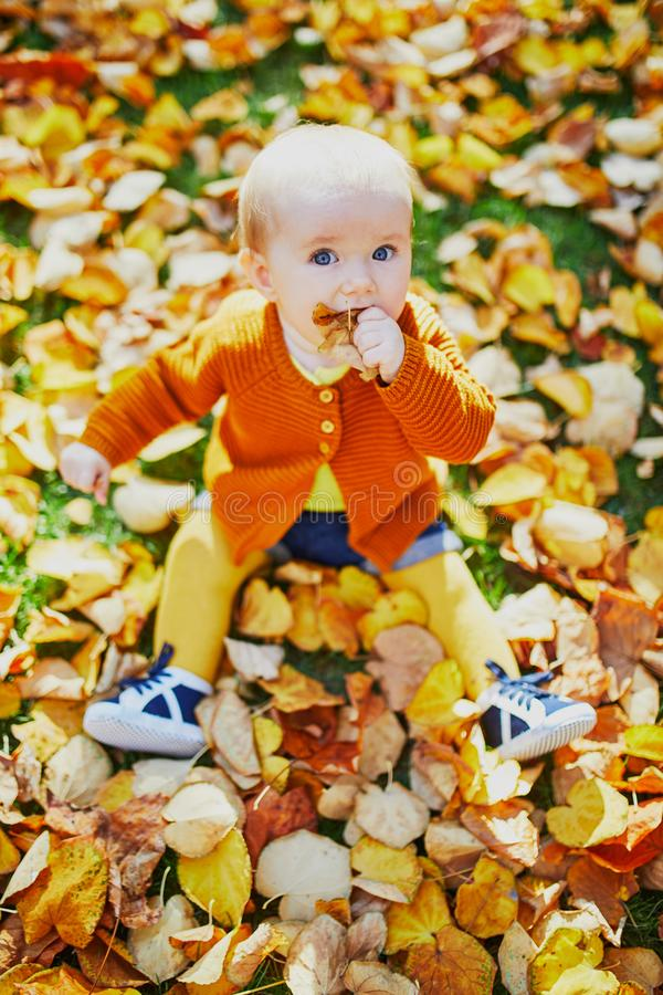 Petit bébé mignon ayant l'amusement le beau jour d'automne image libre de droits