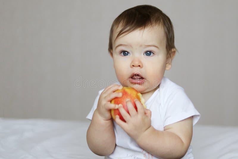 Petit bébé mignon mangeant une grande pomme rouge photo libre de droits