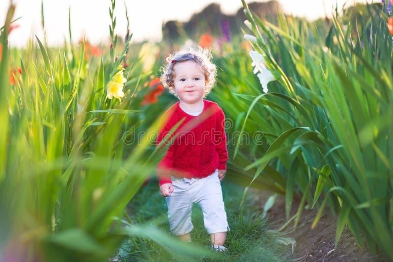 Petit bébé mignon marchant dans un domaine sur des fleurs photos libres de droits