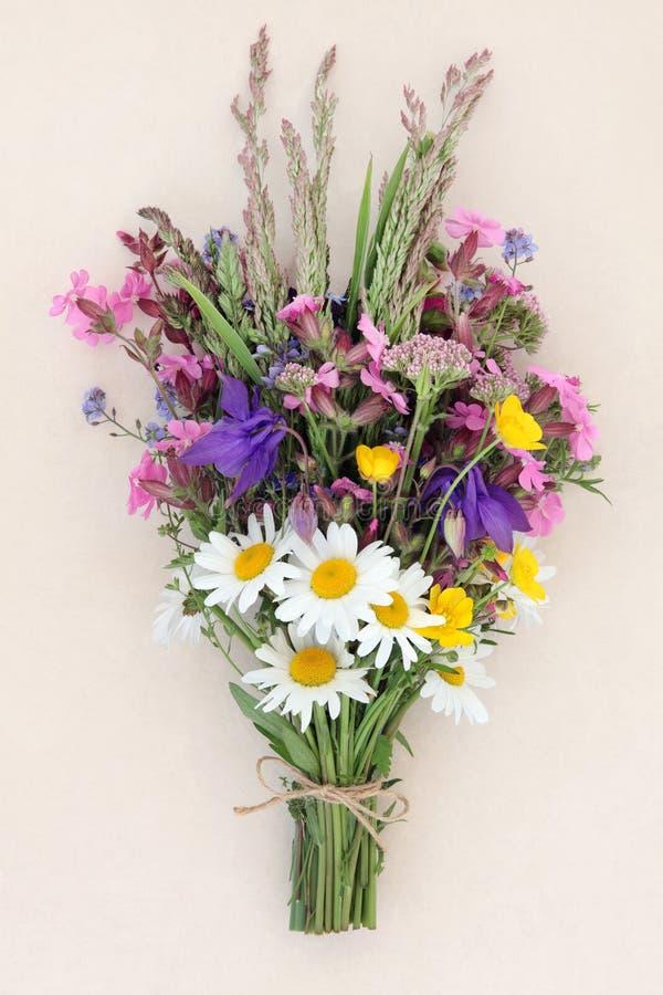 Petit bouquet de fleur sauvage d'été photo libre de droits