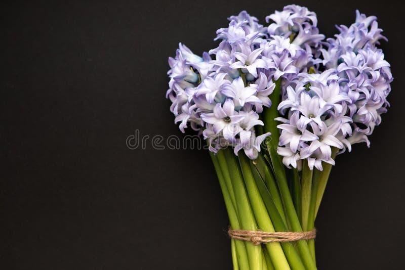 Petit bouquet des jacinthes bleues de fleurs de ressort sur un fond foncé avec l'espace pour le texte photographie stock libre de droits
