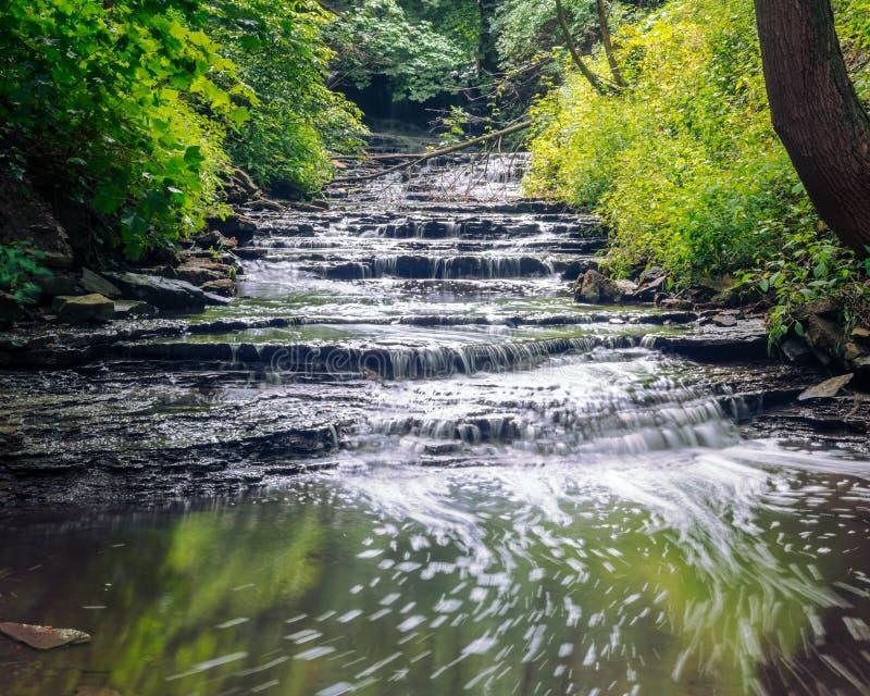 Petit, cascade doucement Rolls de style d'étape par la forêt paisible photos stock