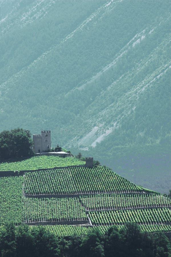 Petit château en montagnes entourées par des vignes images stock