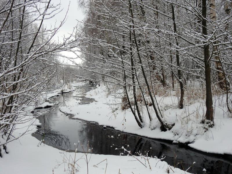 Petit chanel et et beaux arbres neigeux, Lithuanie photographie stock