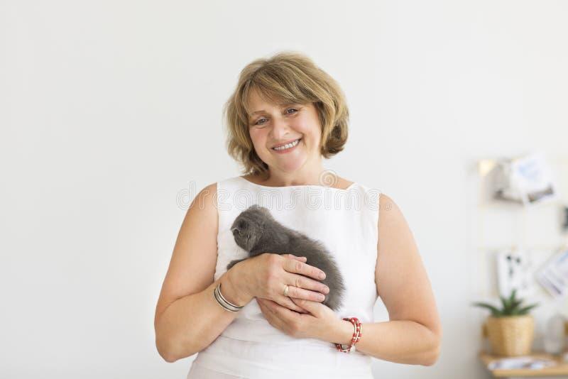 Petit chat se reposant dans des mains mûres de femme photographie stock