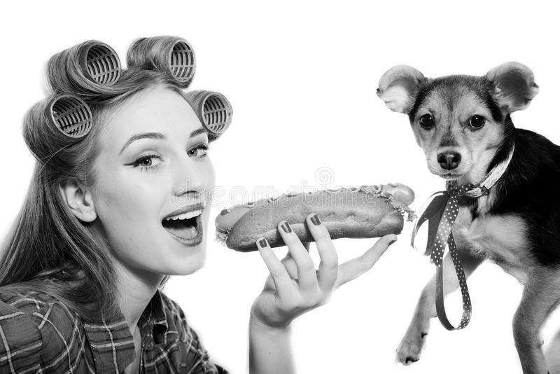 Petit chien mignon et belle jeune femme partageant a photos libres de droits