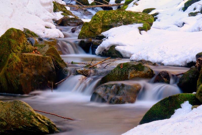 Petit courant avec la neige photo libre de droits