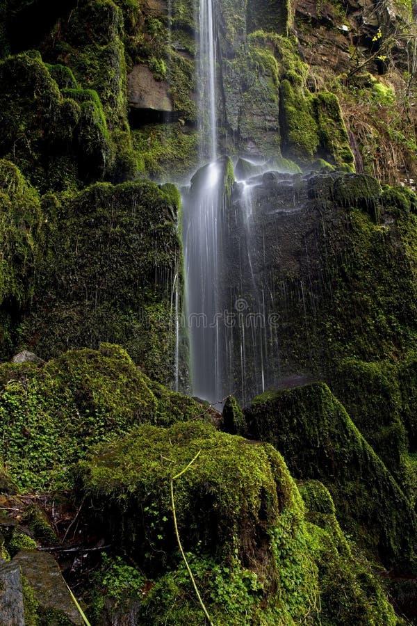 Petit courant d'eau en baisse à la cascade de Melincourt photographie stock libre de droits