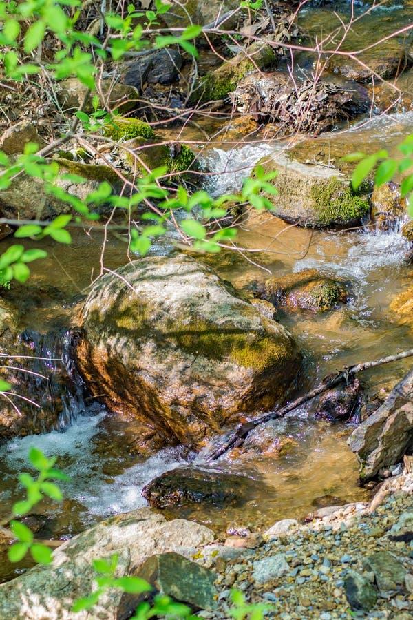 Petit courant de Mountian en Virginie, Etats-Unis image stock