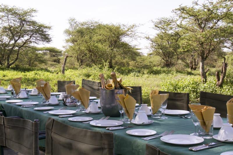 Petit déjeuner élégant de safari, Serengeti image stock