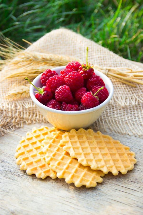 Petit déjeuner dans le jardin Framboises fraîches et biscuits faits maison de gaufre photographie stock libre de droits