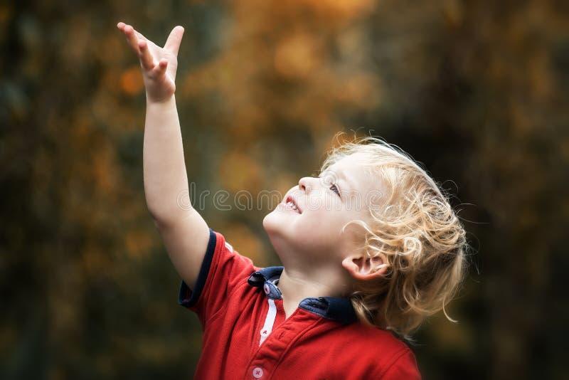 Petit enfant à la lumière du soleil d'automne images stock