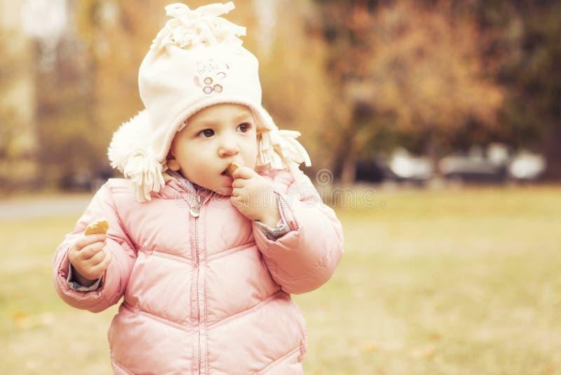 Petit enfant mignon de fille ayant l'amusement dans le parc dans les vêtements chauds d'automne et le x28 ; photographie stock