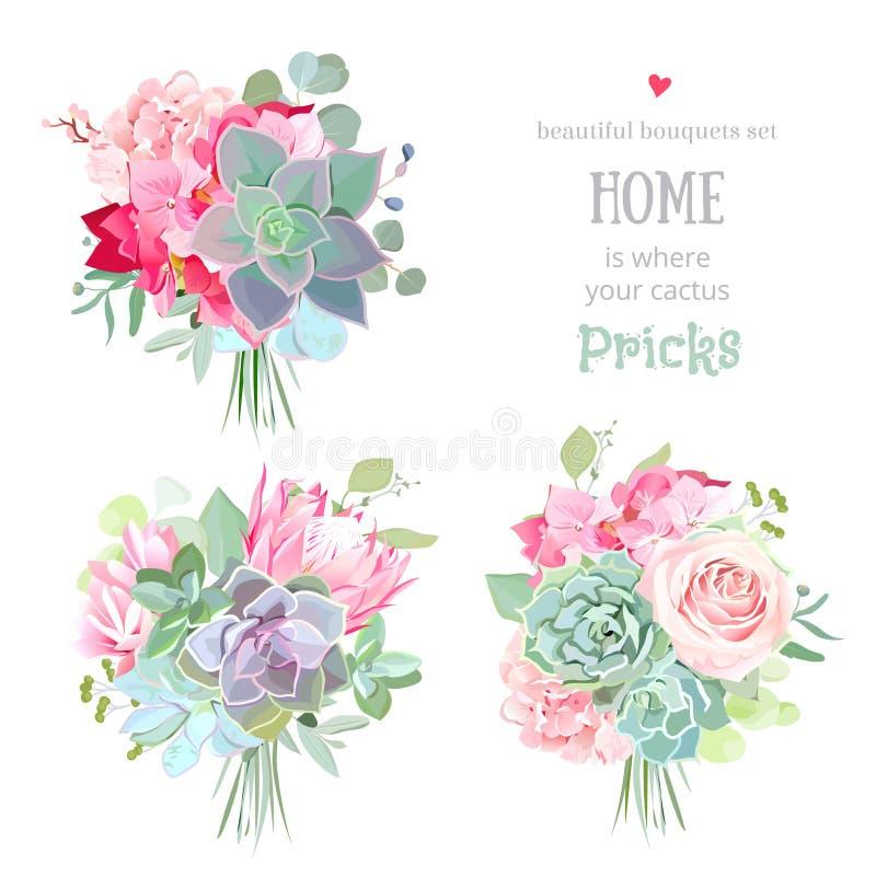 Petit ensemble de conception de vecteur de bouquets de cadeau de succulents illustration libre de droits