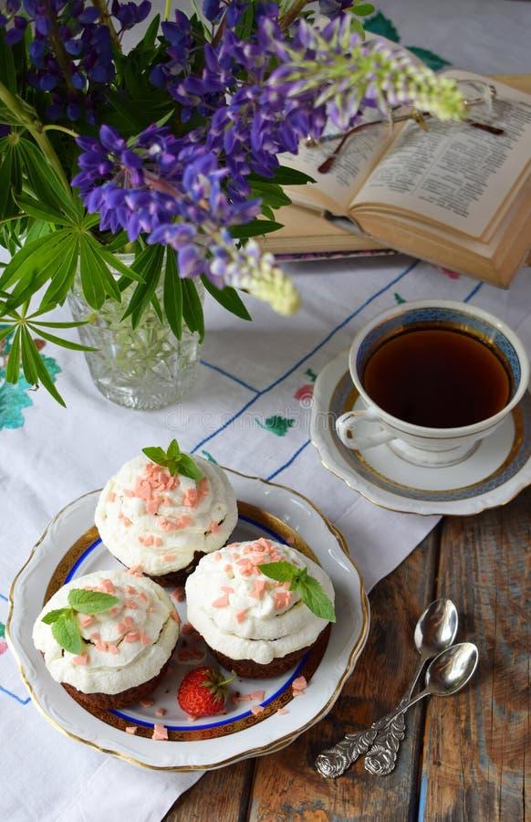 Petit g?teau de chocolat avec de la cr?me et des fraises de vanille Type de cru photos libres de droits