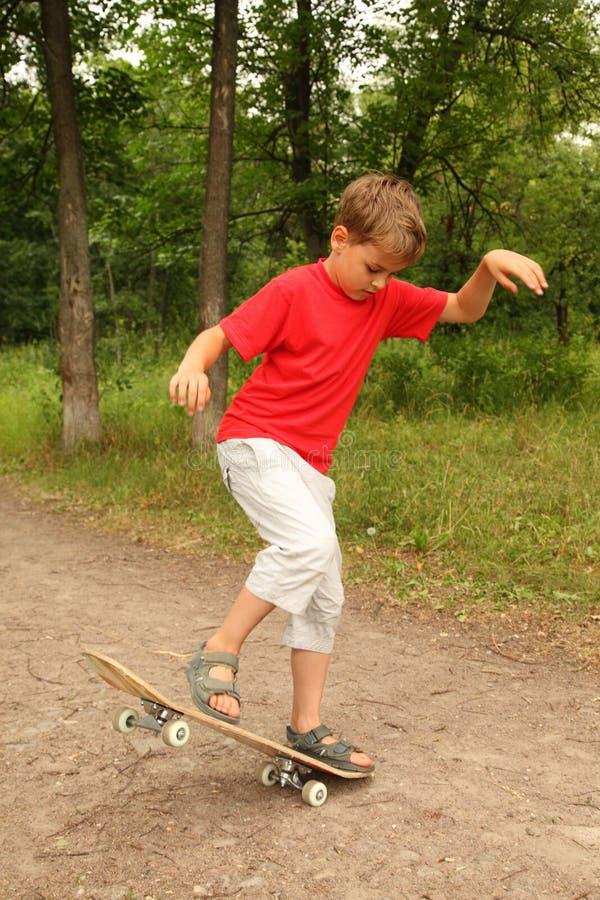 Petit garçon à faire de la planche à roulettes dans la forêt image stock