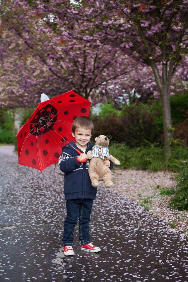 Petit garçon adorable, tenant l'ami de jouet et le parapluie photo libre de droits