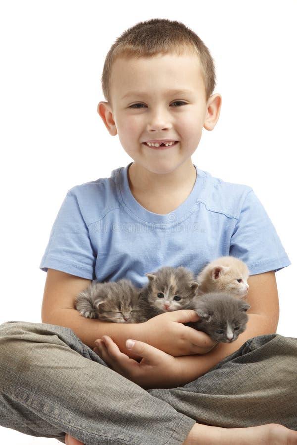 Petit garçon avec des chatons photos stock