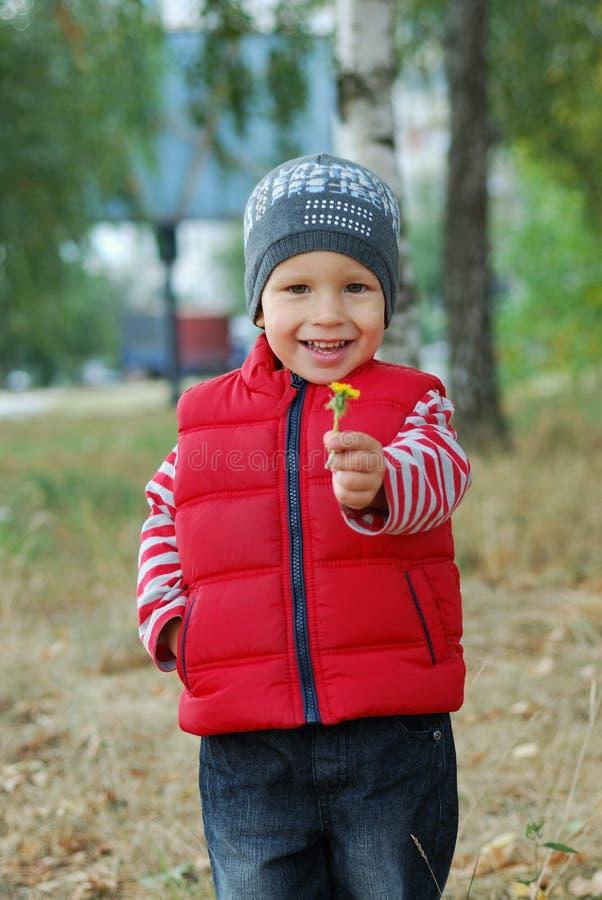 Petit garçon avec la fleur photo libre de droits