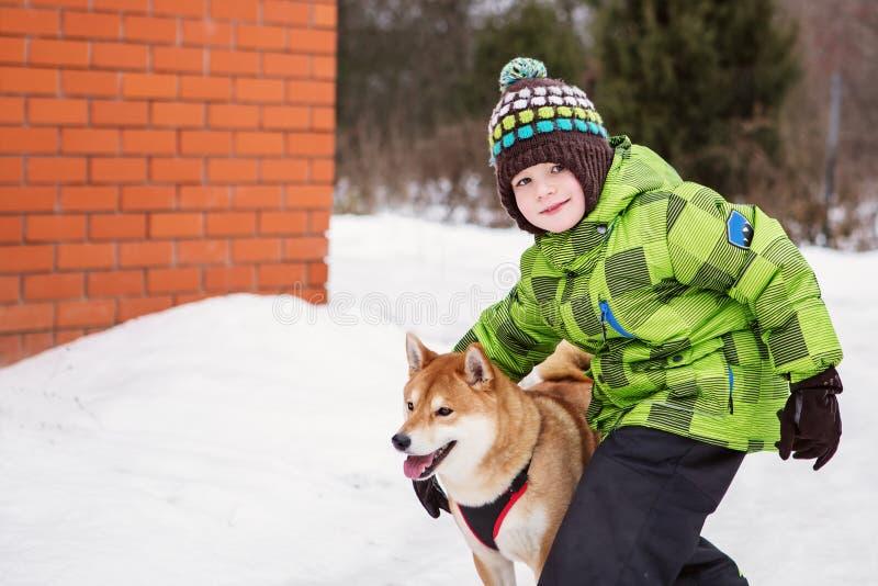 Petit garçon avec le chien de Shiba Inu dehors image libre de droits