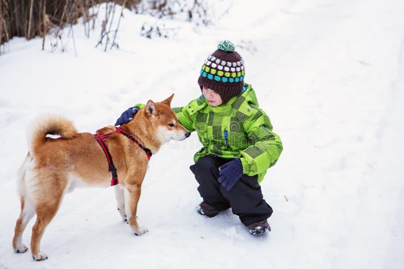 Petit garçon avec le chien de Shiba Inu dehors images stock