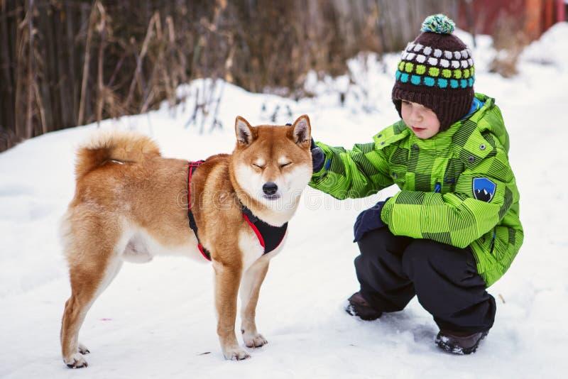 Petit garçon avec le chien de Shiba Inu dehors images libres de droits