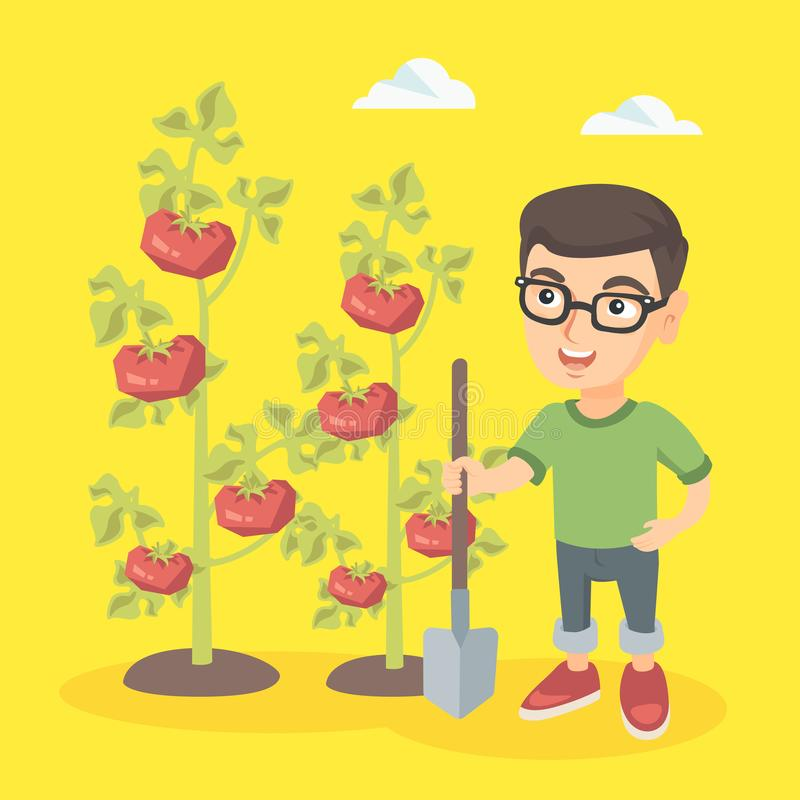 Petit garçon caucasien d'agriculteur cultivant des tomates illustration de vecteur