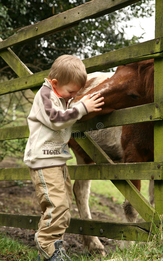 Petit garçon et cheval photo stock