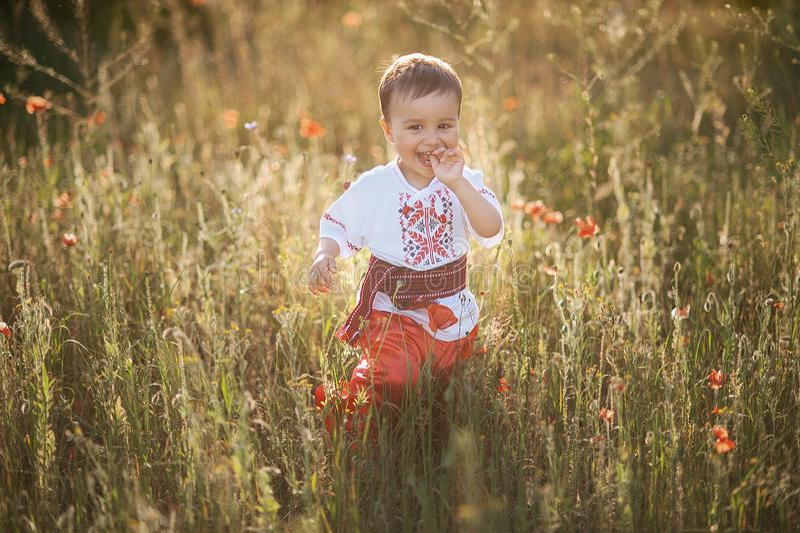 petit garçon heureux dans l'usage ukrainien image libre de droits