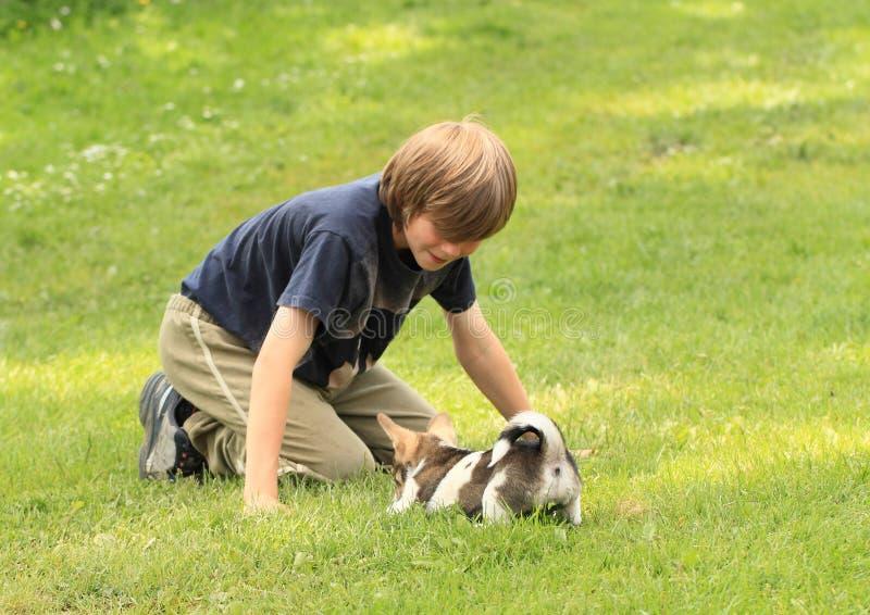 Petit garçon jouant avec un chiot photographie stock