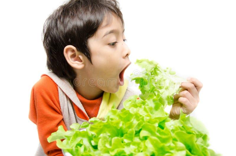 Petit garçon mangeant le légume organique vert frais photographie stock