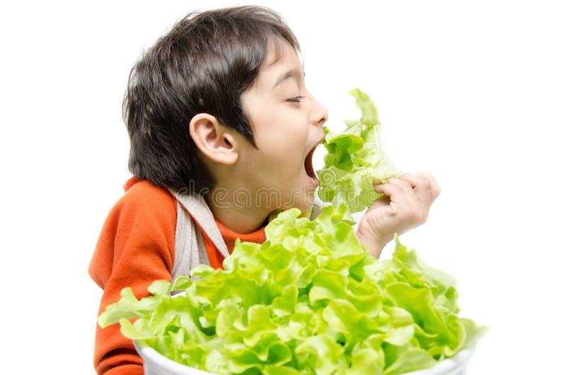 Petit garçon mangeant le légume organique vert frais image libre de droits