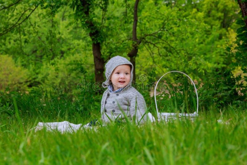 Petit garçon mignon avec des pissenlits photographie stock libre de droits