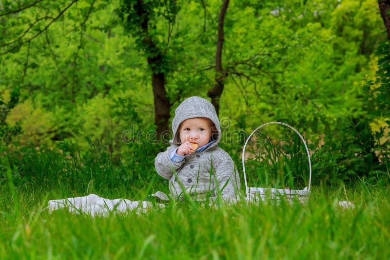 Petit garçon mignon avec des pissenlits photo libre de droits