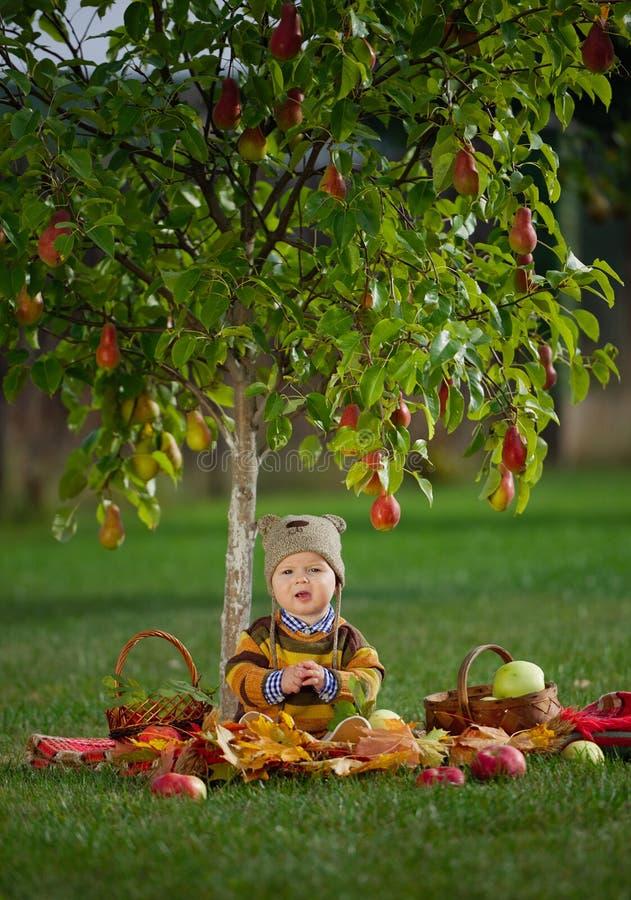 Petit garçon mignon avec la récolte image stock