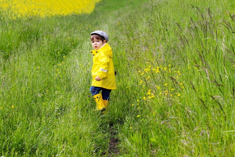 Petit garçon mignon dans l'imperméable jaune, les bottes en caoutchouc et le chapeau marchant dans le pré avec l'herbe verte rega images stock