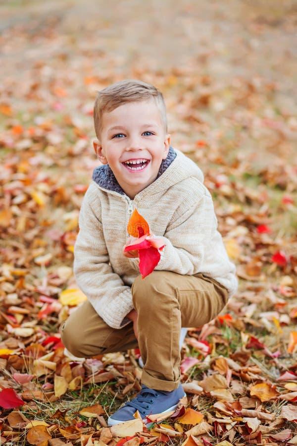 Petit garçon mignon heureux en parc d'automne parmi les feuilles tombées photographie stock libre de droits