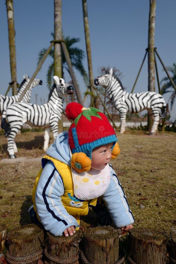 Petit garçon mignon jouant avec le zèbre photo libre de droits