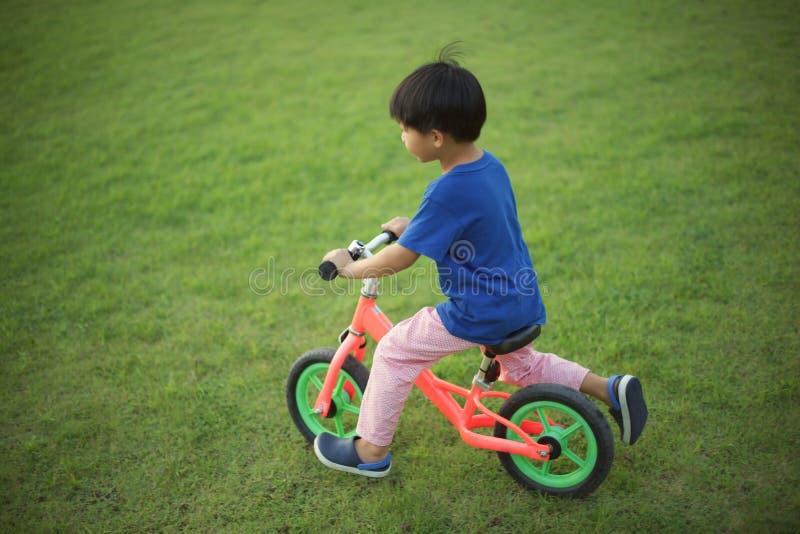 Petit garçon montant un vélo d'équilibre sur l'herbe photos stock