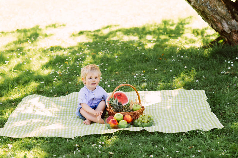 Petit garçon s'asseyant sur un tapis ayant un pique-nique avec un panier plein des fruits photos stock