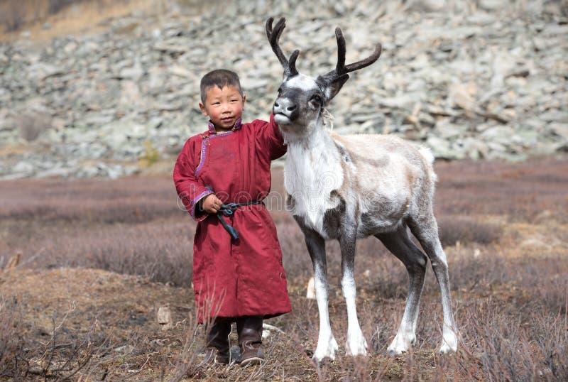 Petit garçon tsaatan jouant avec son renne du ` s de famille images stock