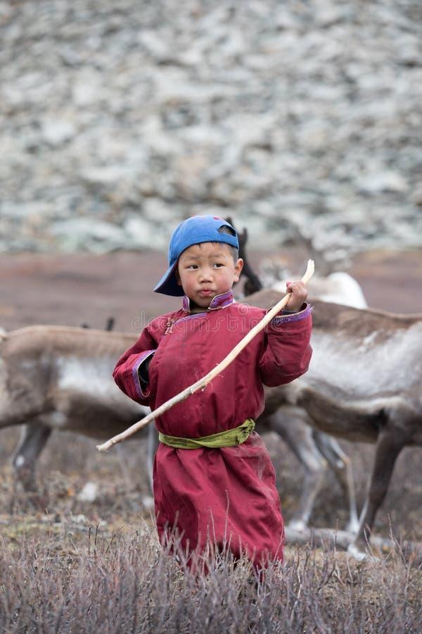 Petit garçon tsaatan posant avec son renne du ` s de famille photo stock