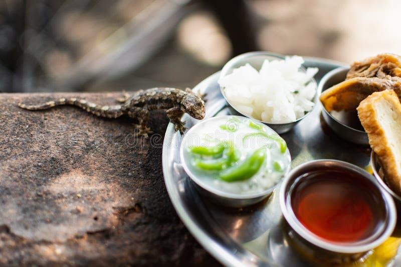 Petit gecko mangeant de la nourriture thaïlandaise traditionnelle servie dans des cuvettes en métal au restaurant de rue à Bangko photographie stock