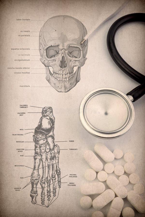Petit groupe squelettique humain de système de tête et pied, pilules, thermomètre et stéthoscope image stock